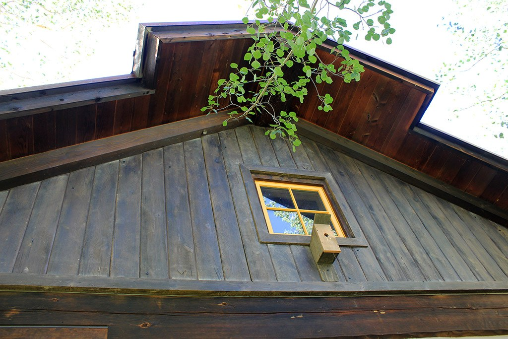 Shiplap 12″ and 8″ - Better Than Logs